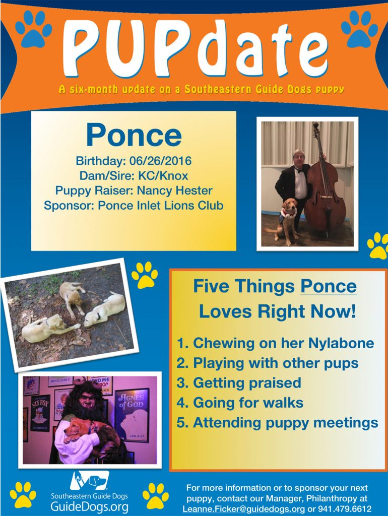 A PUPDate about Ponce, our club's sponsored Puppy at South Eastern Guide Dogs.